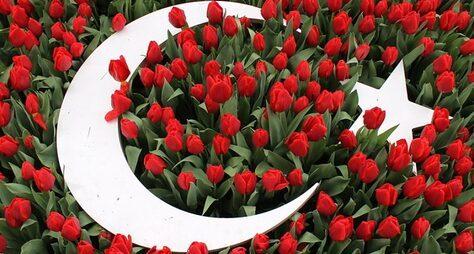 Османские султаны иихтюльпаны