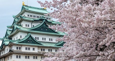 Топ-5 символов Токио: живой рассказ остолице