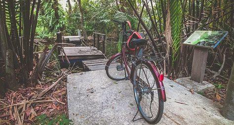 Велотур поджунглям Банг Крачао