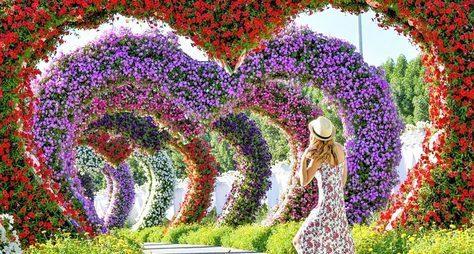 Современный Дубай, Парк цветов иGlobal Village