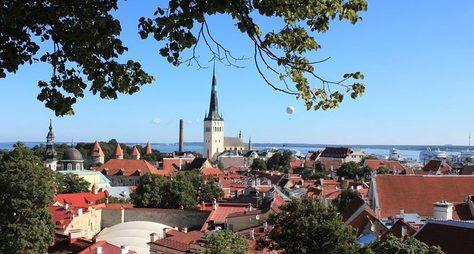 Весь Таллин заодин день