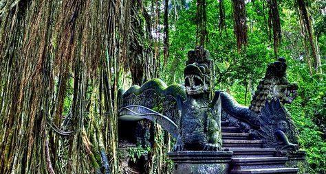 Убуд— город ремесел изаповедной природы Бали