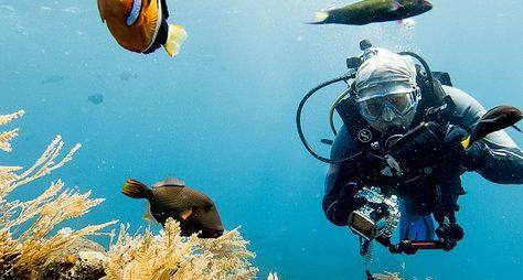 Бали: о, дивный подводный мир!