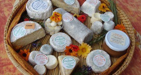Поездка наферму попроизводству сыров