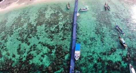 Идеальный день наострове Корал